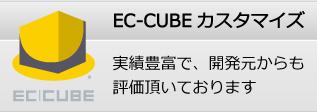 EC-CUBE構築、EC-CUBEカスタマイズ。