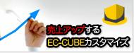 売上アップ。売れるECに変えます。EC-CUBEカスタマイズサービス